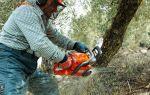 Бензопила для заготовки дров, как подобрать оптимальный аппарат