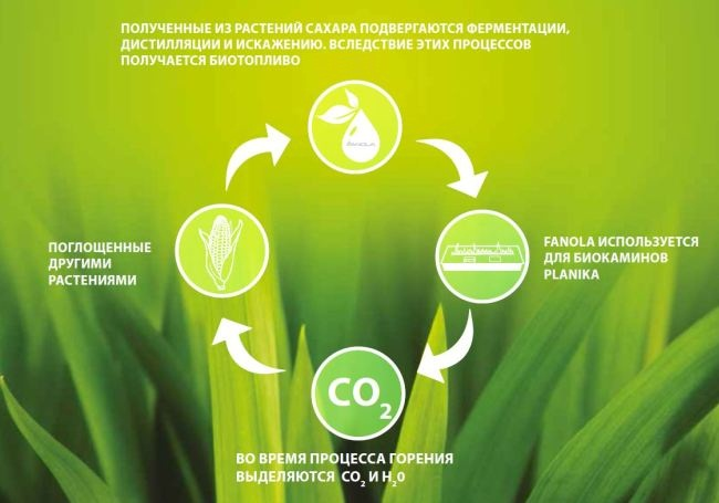 Принцип работы биотоплива