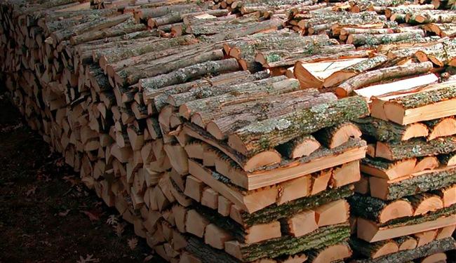 Запасы дубовых дров