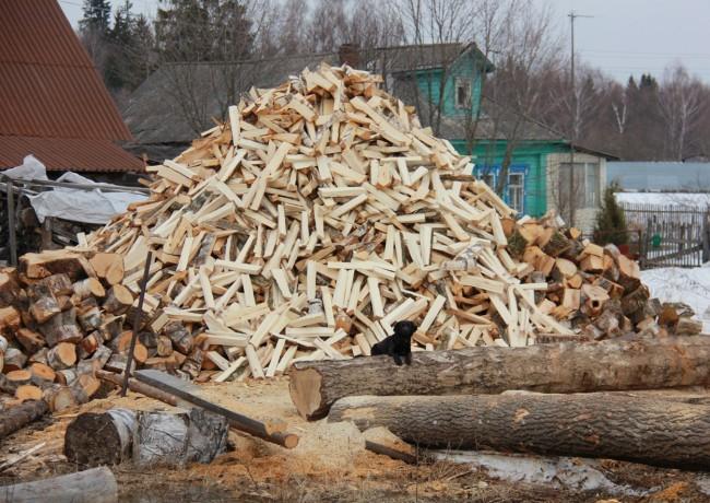Заготовка леса в зимний период