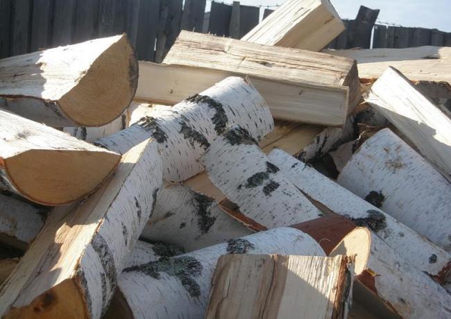 Заготовка дров из березы